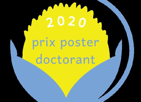 Appel à Posters – Prix Poster Doctorant / Printemps de la Recherche en Éducation 2020