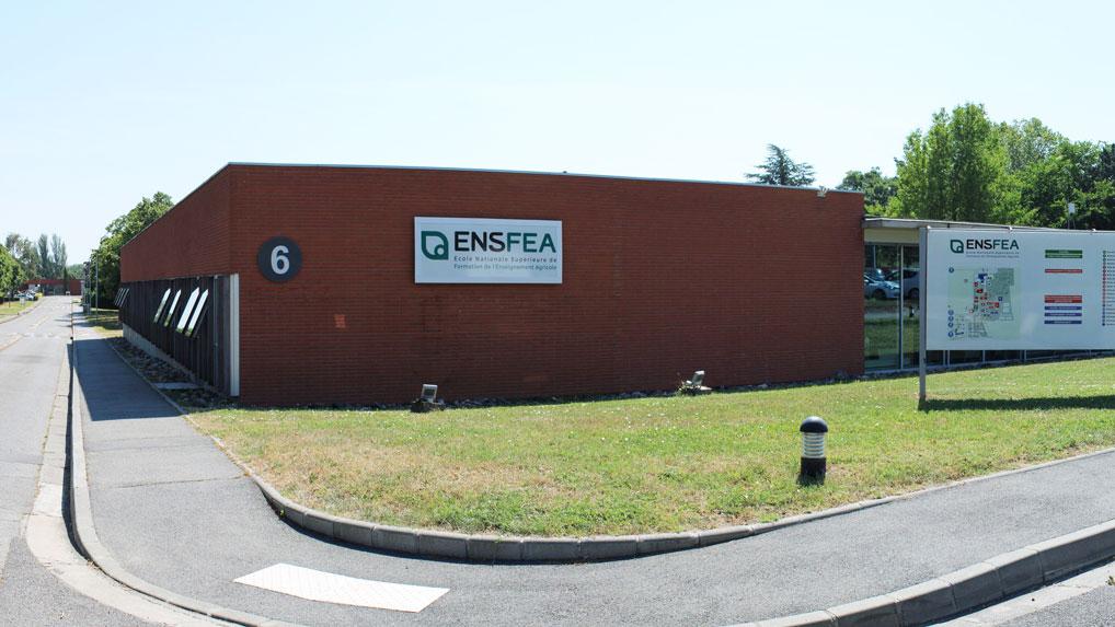 photo ENSFEA 2