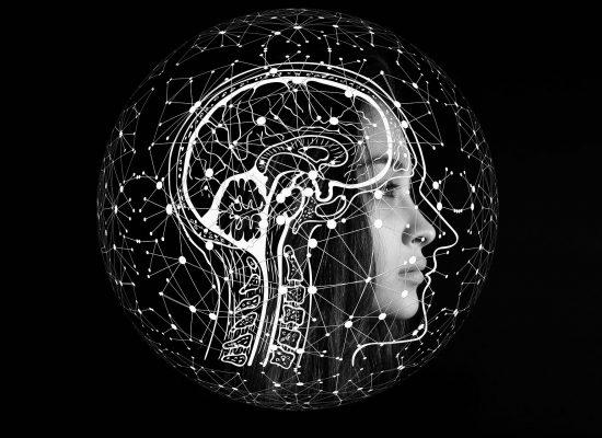 Rendez-vous de l'éducation inclusive – L'apport des neurosciences à la recherche sur l'inclusion